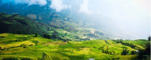 5 Countries Where Foreigners Can Buy Land in Asia