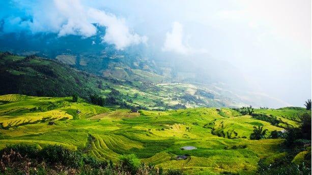 asian-landscape