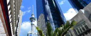 Investing in New Zealand Commercial Property: Full Guide